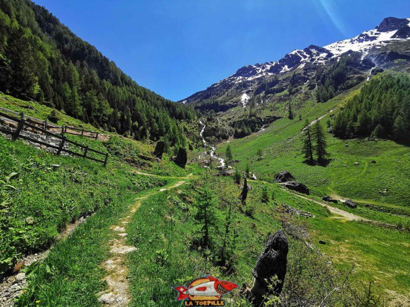 Le fond du val de Réchy. Le Bec de Bosson (pas sur l'image) est le montagne la plus haute du val de Réchy à plus de 3000 mètres.