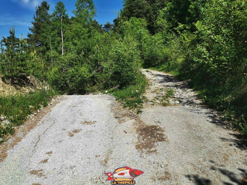 Le début du bisse n'est pas très bien indiqué. Il faut prendre la route à gauche sur le photo qui mène au début du sentier dans la forêt.