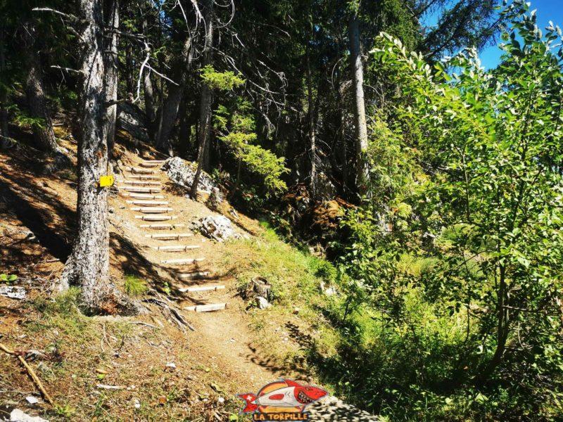 Plusieurs escaliers le long du chemin. bisse du Tsittoret