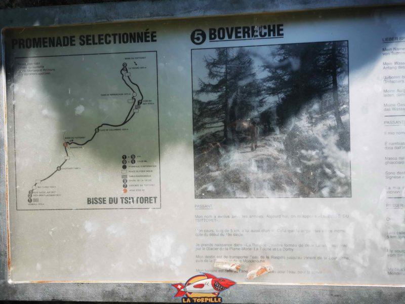 Un panneau didactique à Bovèreche. bisse du Tsittoret
