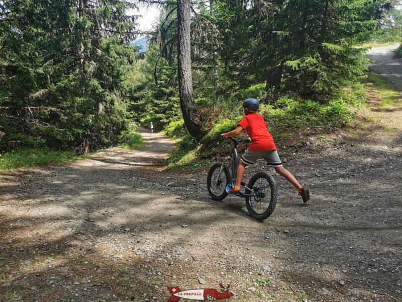 La partie terminale du parcours de trottinette se trouve dans la forêt.
