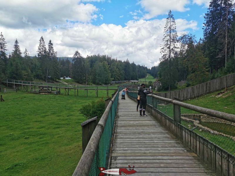 Les parc des animaux des deux côtés du chemin surélevé emprunté par les visiteurs. juraparc