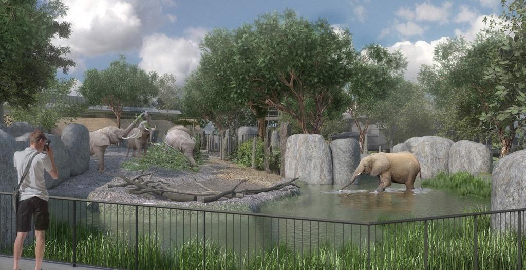 L'enclos des éléphant au zoo de Bâle.