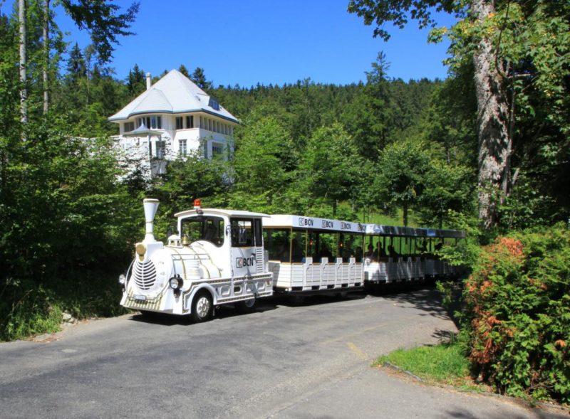 Le petit train touristique de la Chaux-de-Fonds.
