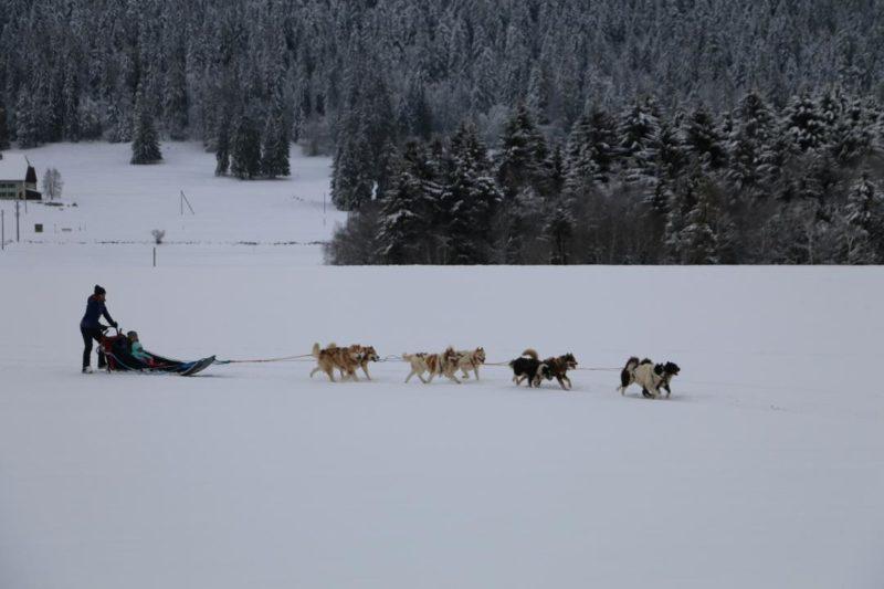Chaque année a lieu la Fête du Froid en février avec des activités hivernales comme le traineau