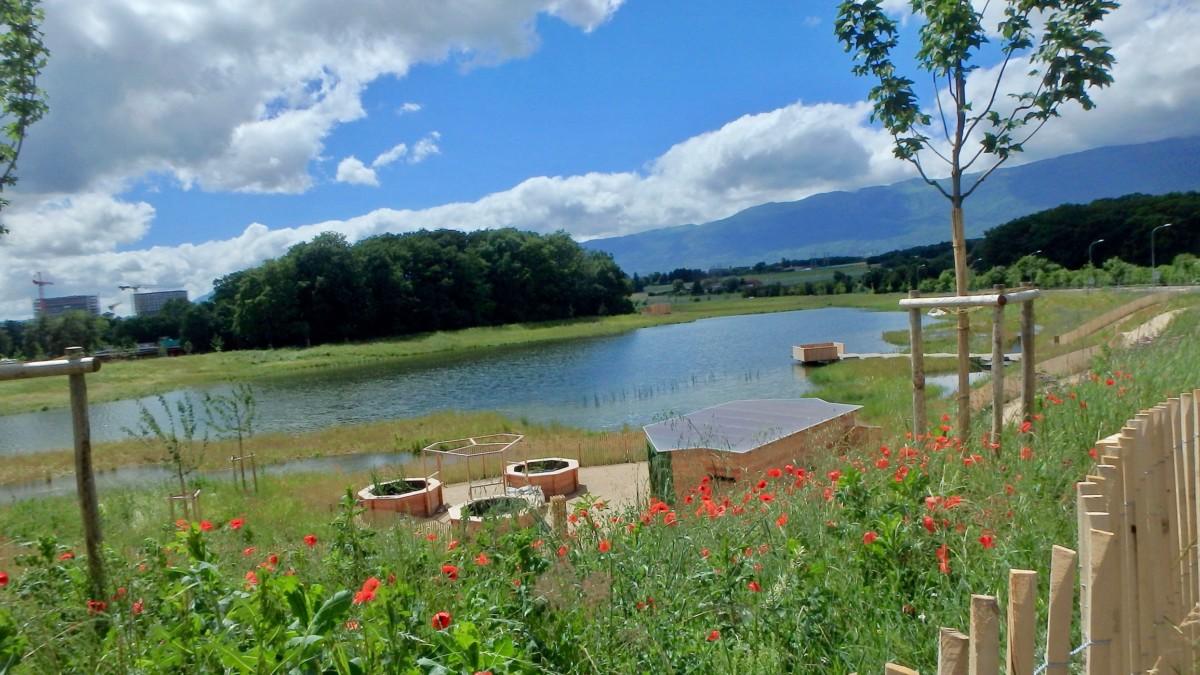 Lac des Vernes