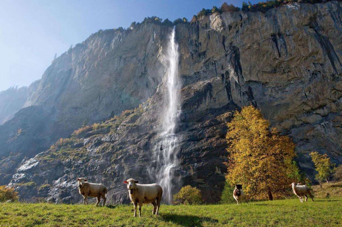cascade du Mürrenbach