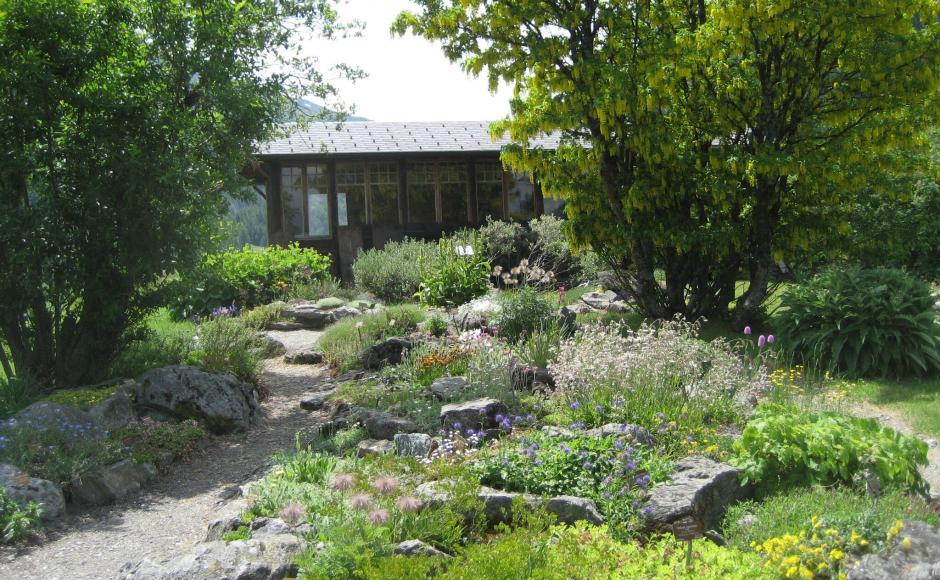 Le jardin alpin la Linnaea.
