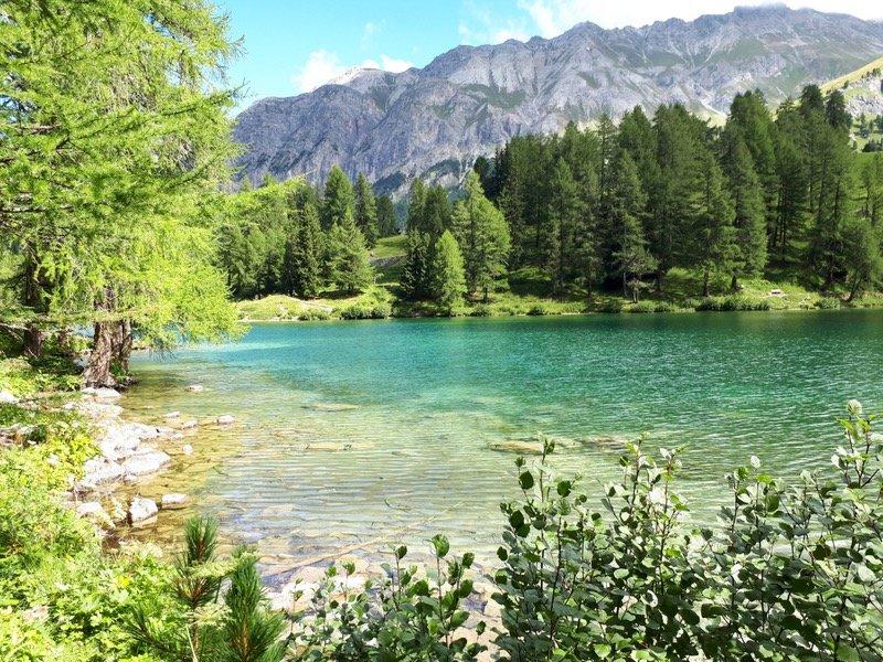 Lac de Palpuogna (GR)