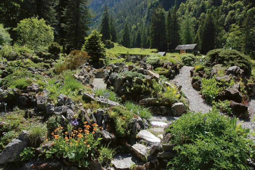 Jardin alpin de Bex.
