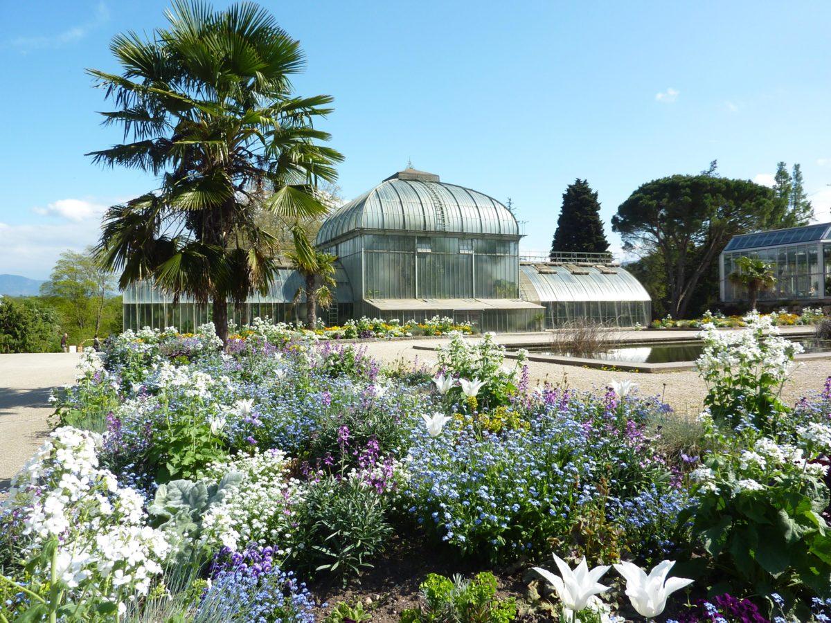 Le jardin botanique de Genève.