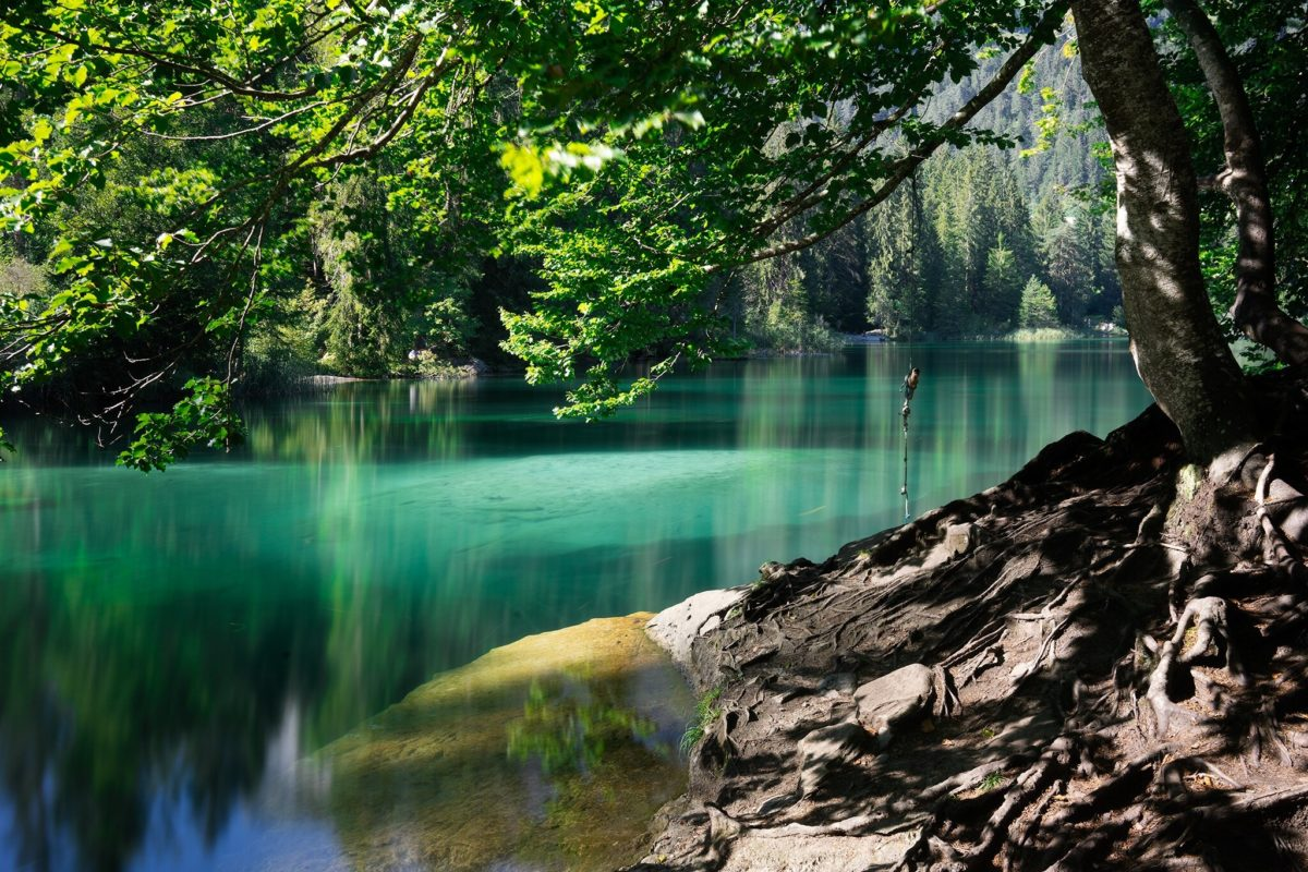 Lac de Cresta (Flims, Trin, GR)