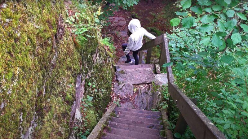 Des escaliers pour descendre aux gorges mystérieuses de tête-noire
