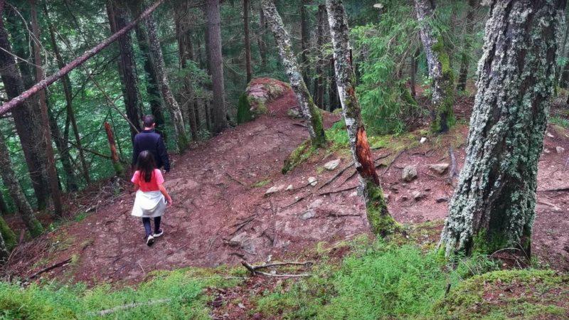 Le chemin en forte pente pour atteindre les gorges mystérieuses de tête-noire