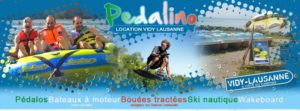 logo pedalino